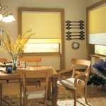 Synergy Roman Shades